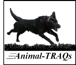 Animal-TRAQs motion analysis software - License